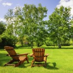 Healthy Green Lawn, Lawn Services, Green Meadow, Lawn Care Program, Tennessee, Mississippi