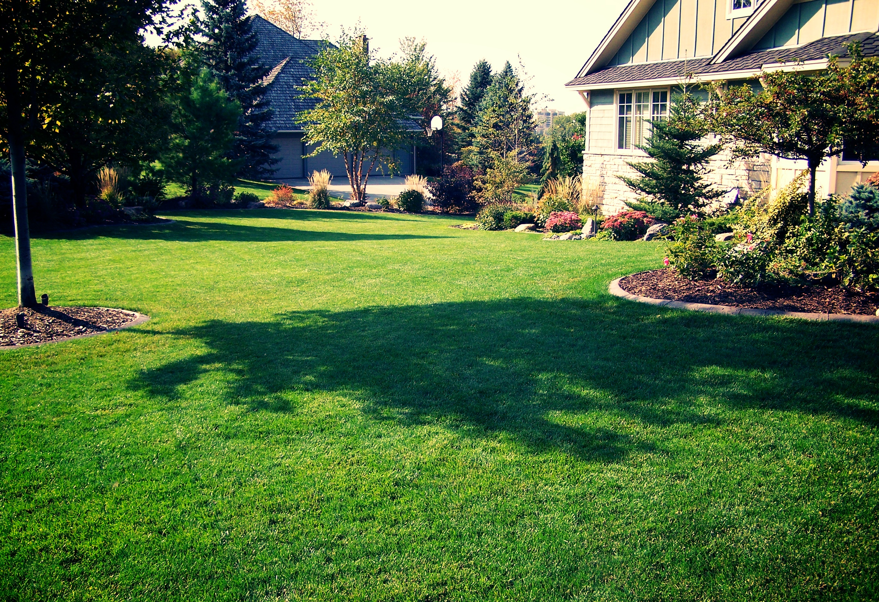Collierville Lawn Care • Germantown Lawn Care • Memphis Tennessee
